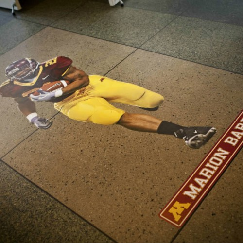 Gopher themed Bar Mitzvah - Marion Barber