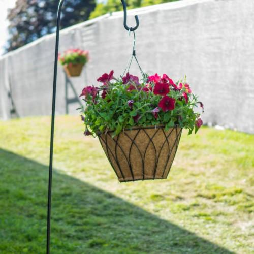 Cambria hanging basket web