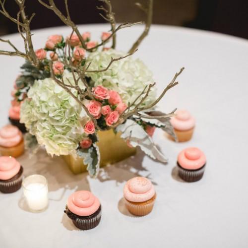 Herreid cupcakes