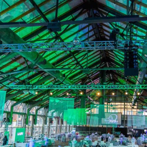 SPS lighting blue-green