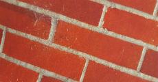 Brick 230 x 120