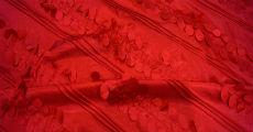 Confetti 230 x 120