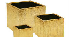 Etched Square Gold 230 x 120