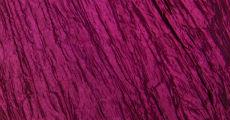 Raspberry Crush 230 x 120