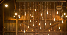 upsher edison bulbs 230-x-120