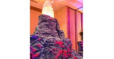 Volcano 230 x 120