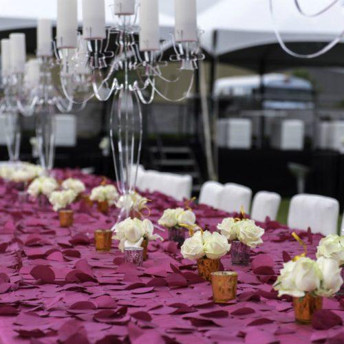 Upsher Casino Purple table close