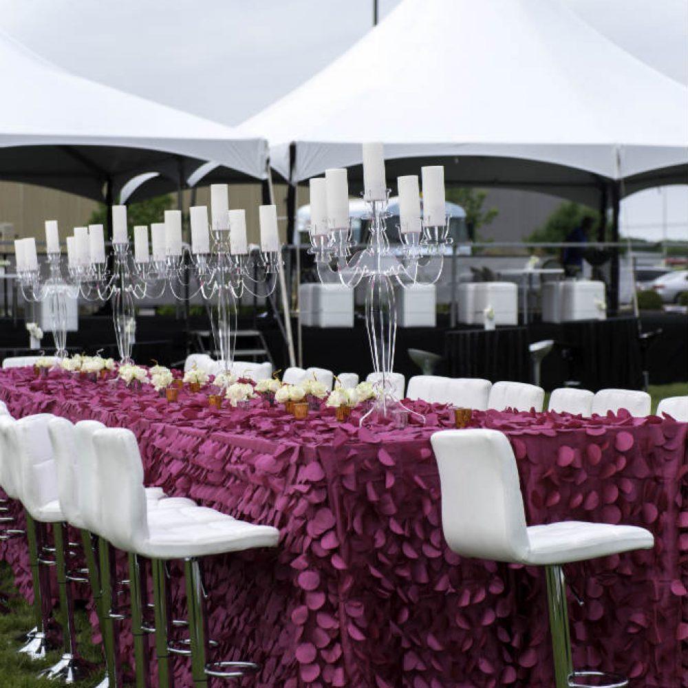 Upsher Casino purple table