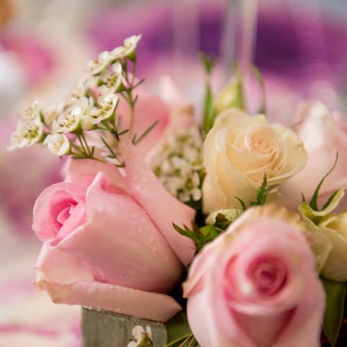 Showroom pink floral 500 x 500