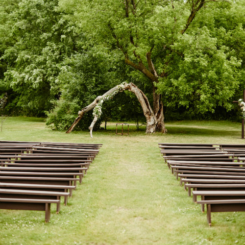 Daniels Wedding ceremony tree 500 x 500