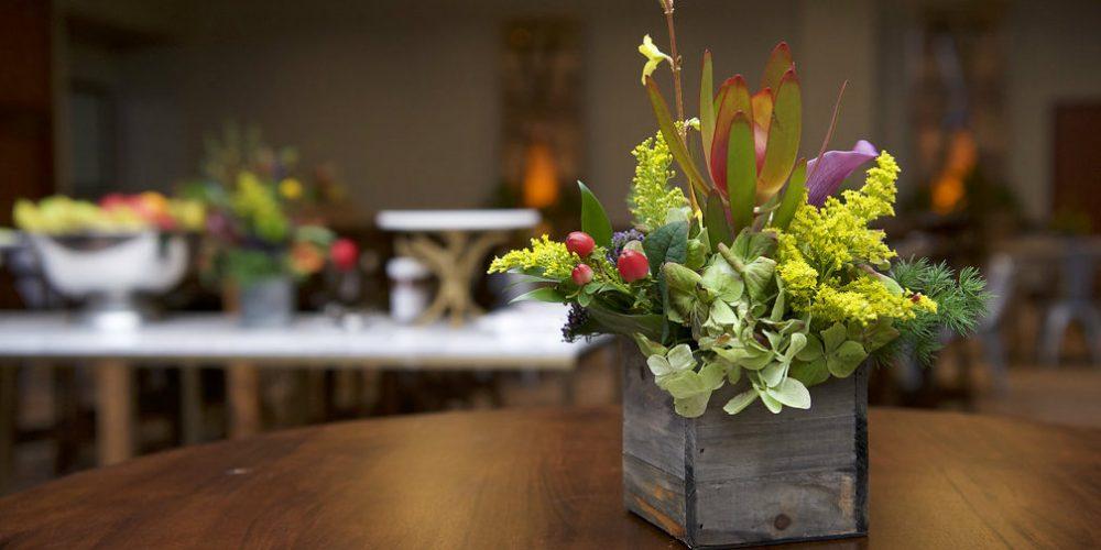 Events Forum-Pepsi Lodge floral blur 1000 x 500