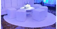 White Circle Carpet