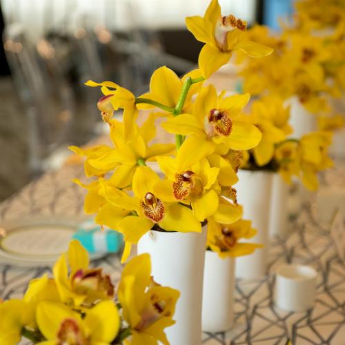 Crlson Fellows 2019 Orchids